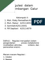 regulasi pengembangan galur