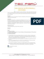 Automatización Industrial con PLC's Siemens  y Allen Bradley