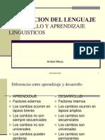 Adquisiscion Del Lenguaje
