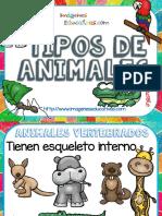 Tipos-de-animales-clasificación-PDF.pdf