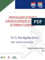 IMP-Didatico_creditos de Carbono e Cogeracao 06