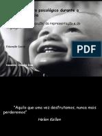 fasedodesenvolvimento-110516074903-phpapp02