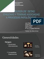 Toxicología de Setas chilenas y toxinas asociadas a