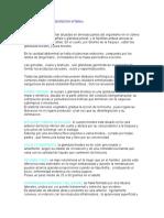 Glandulas de Secrecion Interna. Anatomia Resumen (1)