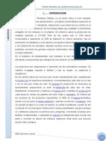 MARABAMBA-BOTADERO.docx