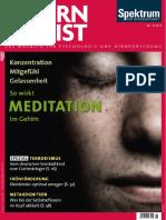 Gehirn Und Geist 2015-5