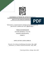 Tesis - Extraccion y caracterizacion reologica de polisacaridos tipo pectina.pdf