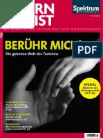 Gehirn und Geist15-9.pdf
