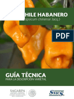 Chile habanero.pdf