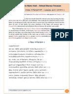 Pitru.pdf