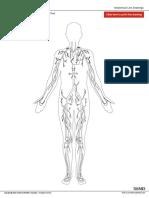 circulatory_wo_labels.pdf