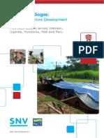 Snv Fact Productive Biogas 2014 Final
