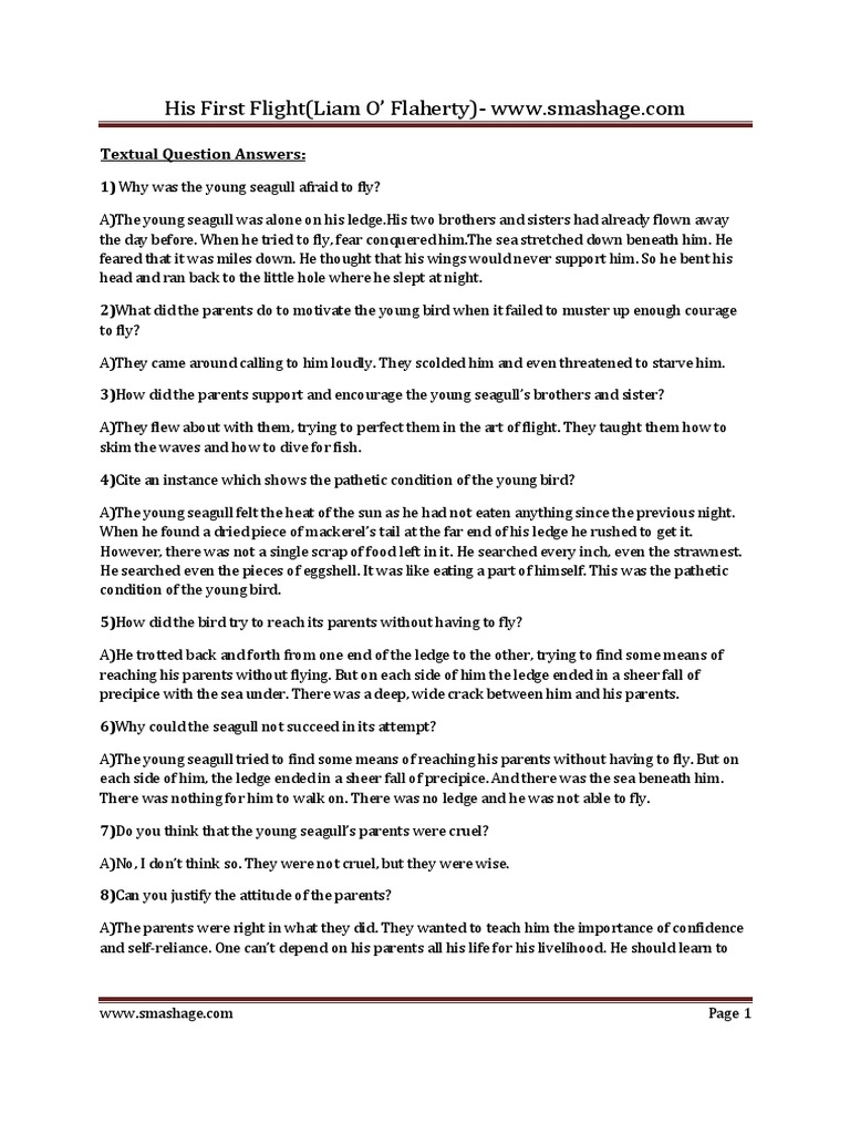 Plus One English Notes - His First Flight By Liam O Flaherty pdf
