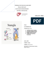 Neuroglia.docx Iiii (1)