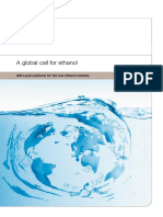 a_global_call_for_ethanol_ppi00166en.pdf