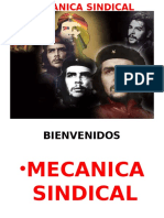 Mecanica Sindical
