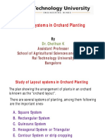 Planting System in Orchards