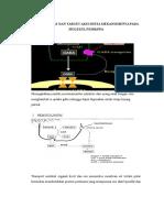 Mekanisme Kerja Obat Secara Farmakologi Molekuler