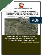 TDR PUENTE DE PARIAPAGCHAG.docx