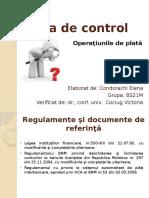 Fişa de Control audit