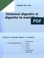 sistemul digestiv bun.pptx