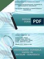 Dezvoltare-durabila