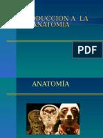 Introduccion Anatomia