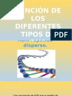 Tipos de ADN