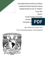 156895247 Mucopolisacaridosis y Aminoacidurias