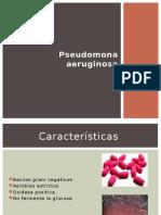 Pseudomona-Aeu