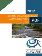 Informe Final Medio Ambiente 2012