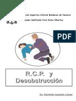 02.RCP.pdf