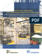 Boletin MES-Proceso.pdf