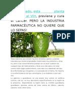 Comprobado Sobre La Guanábana