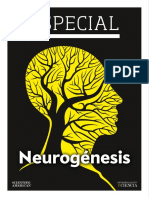 27 Especial Neurogenesis