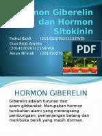 (PPT) Giberelin & Sitokinin
