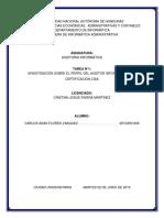 Perfil Del Auditor Informatico