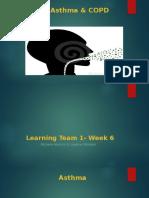 bio 313 learning team 1 week 6 problem