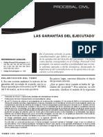 Paula Costa e Silva - Las Garantias del ejecutado