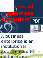 Business organization analysis