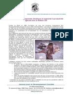 Charbon-vert-Biochar-2010-Fr.pdf