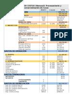Imprimir-ESTRUCTURA-DE-COSTOS.docx
