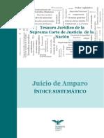 JUICIO DE AMPARO TESAURUS.pdf