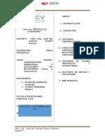 Resumen Ejecutivo (Español)