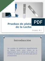 pruebas-de-plataforma.pdf