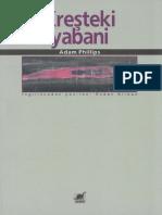 Adam Phillips-Kreşteki Yabani-Ayrıntı Yayınları (2000)