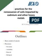 Cadmium in Cocoa