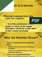 13.10 -Hernia-2007 1