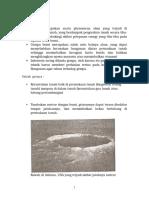 32899_struktur_bumi_dan_teori_plat_tektonik_.doc