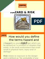 Hazard Risk